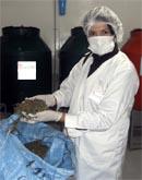 Ximena mostrando le foglie secche di Stevia